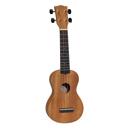 Ukelele en gitaar
